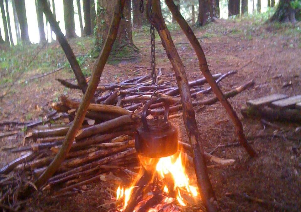 Camp Wild(ish)